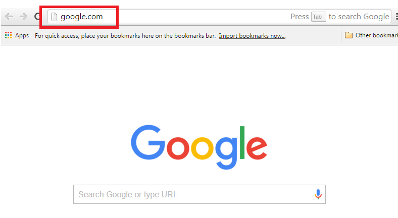 Everything you need to know about your website's domain name